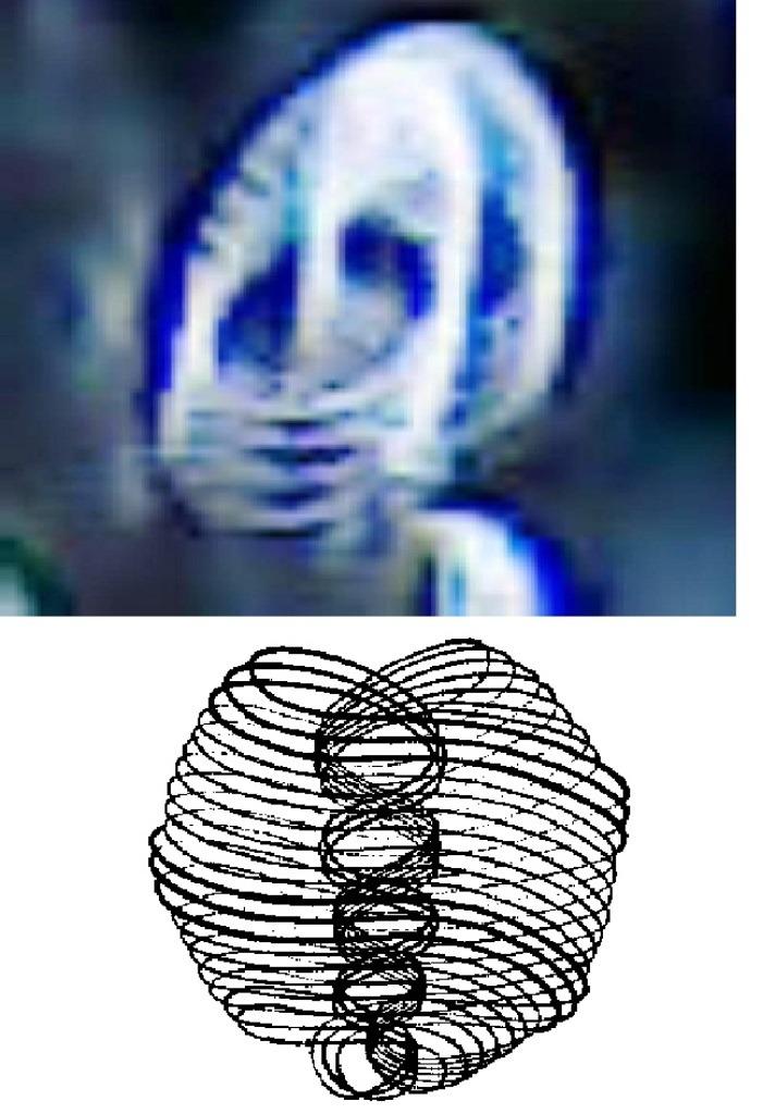 9. Эфирный вихрь - вихревой сегмент структуры материи. H-146